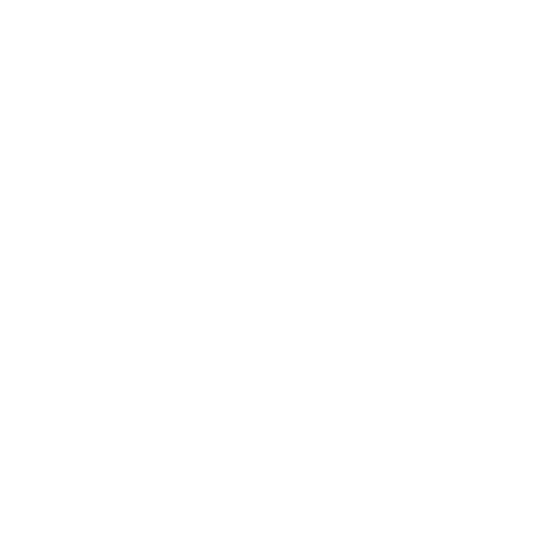 Fiat Group
